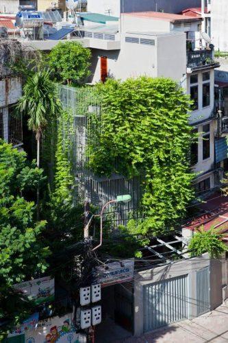 trồng cây xanh theo phong thủy